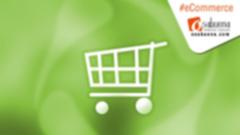 Tipos de Empresas en el Comercio Electrónico (e-Commerce)